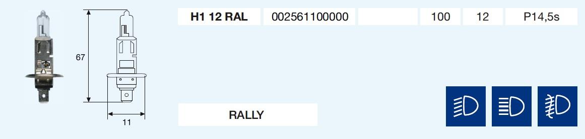 H1 RALLY 12/100-P14,5s