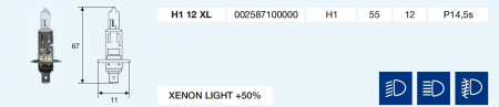 H1 XENON LIGHT +50% 12/55-P14,5s